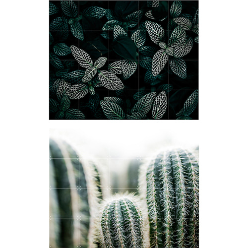 CACTUS AND LEAVES (2 SIZES)